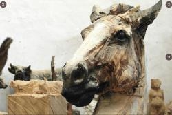 Lingl cheval
