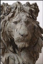 Lingl tete de lion