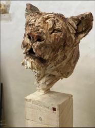 Lingl tete de lionne